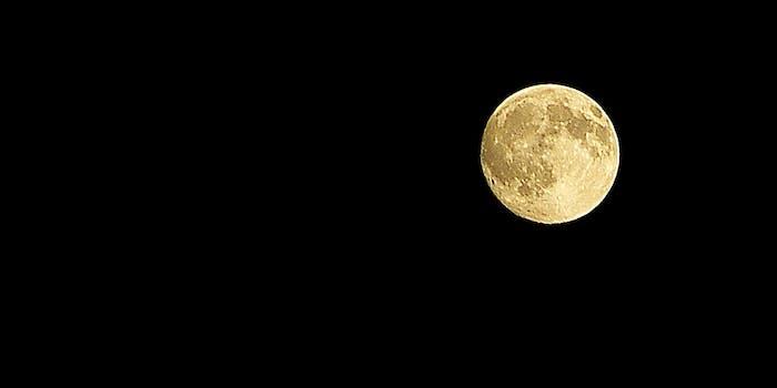Hunter's moon 2008