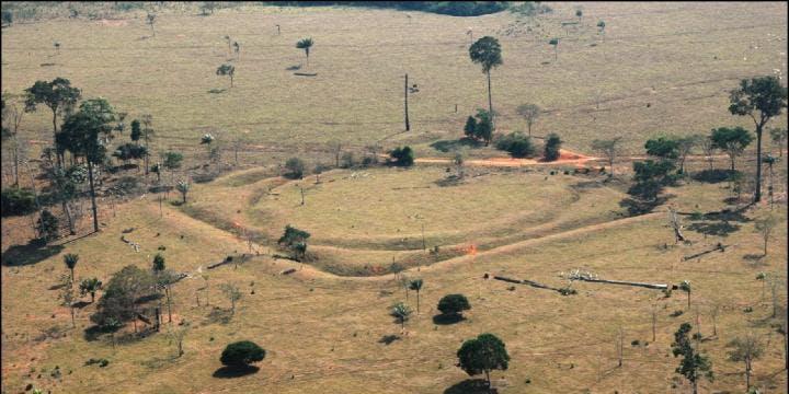 Amazon archeology