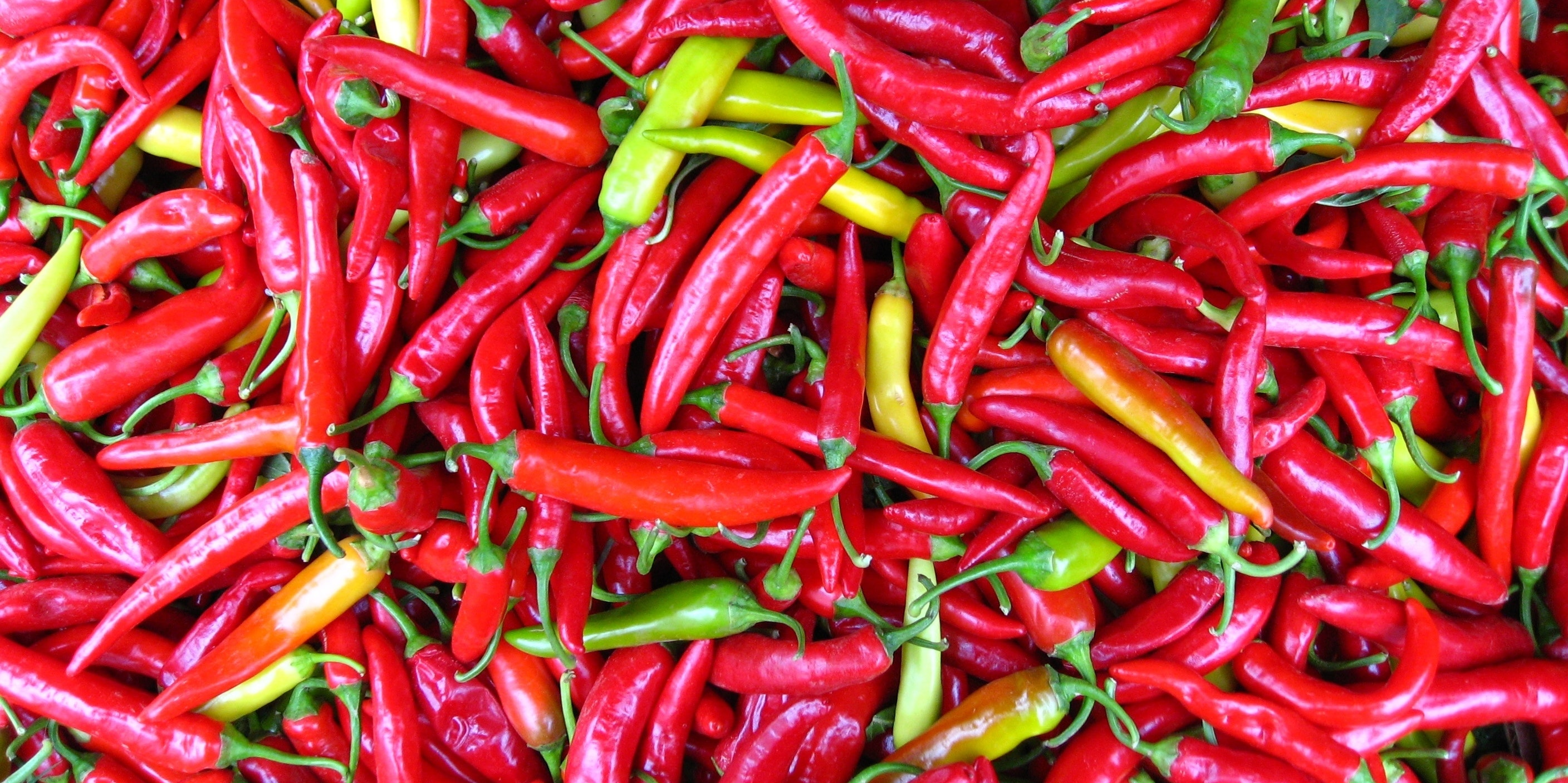 To Calm the Gut, Look to Weed and Hot Peppers