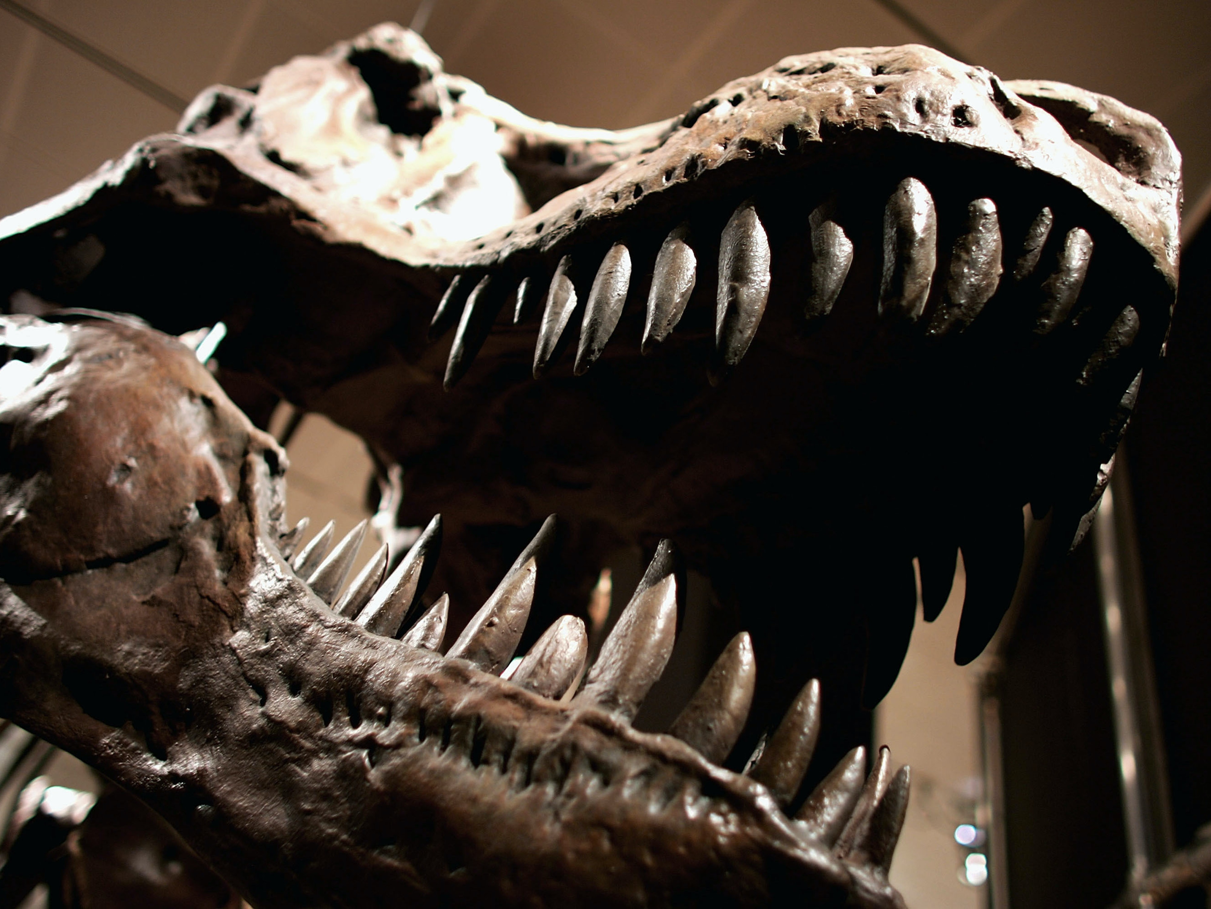 Lost Michael Crichton Book Shows Us Paleontology's Dark Side