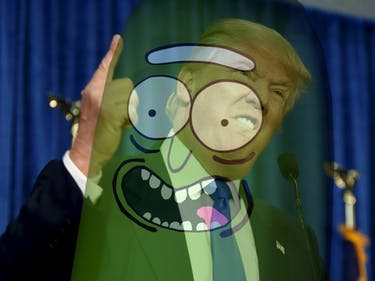 pickle rick donald trump