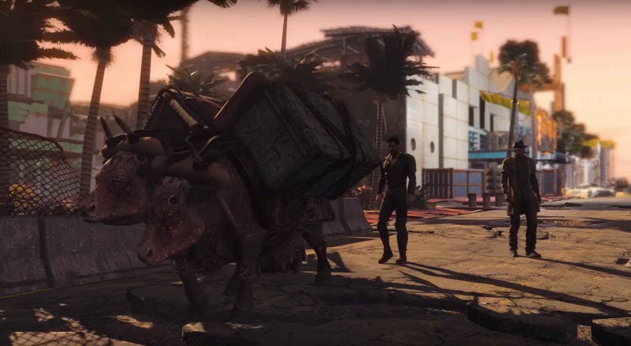 Fallout Miami brahmin trader