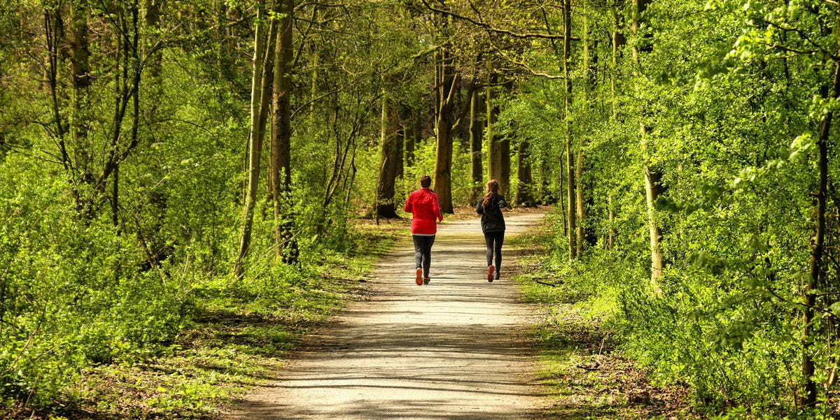 Jogging forest trail