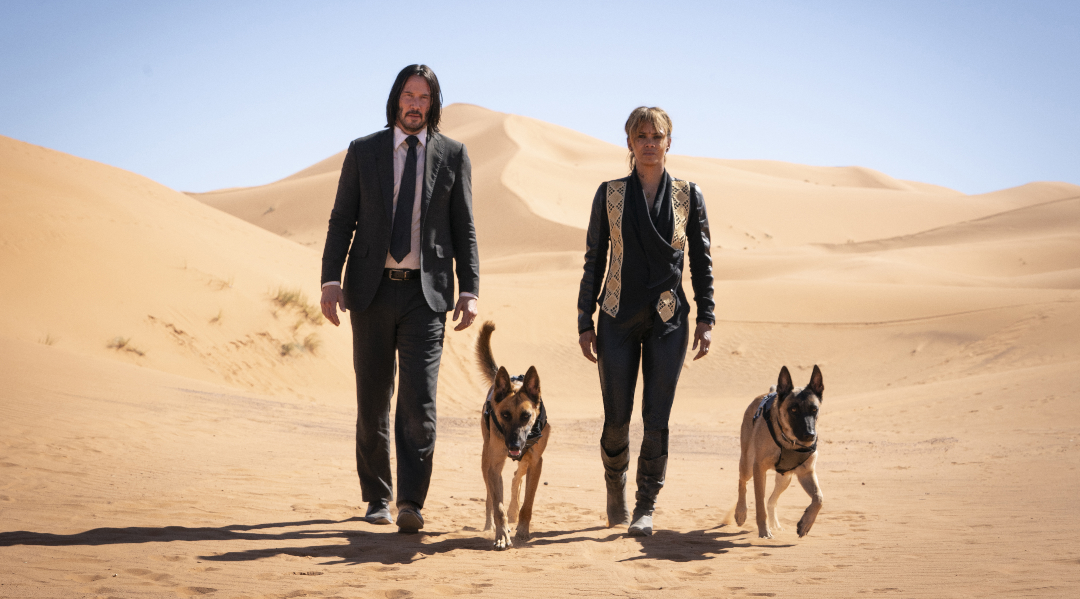 John Wick: Chapter 3': How It Trained Two Dogs Into Action
