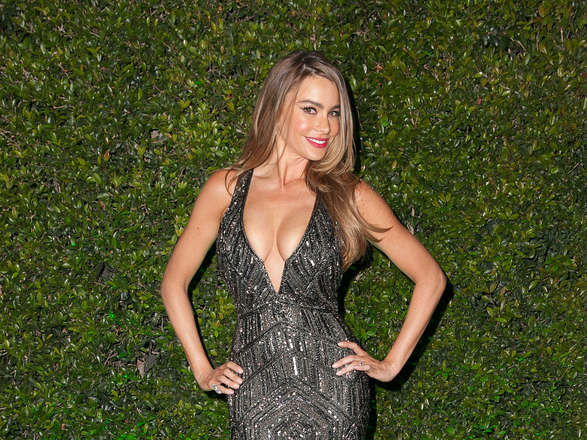 BEVERLY HILLS, CA - JANUARY 12:  Sofia Vergara attends Fox And FX's 2014 Golden Globe Awards Party on January 12, 2014 in Beverly Hills, California.  (Photo by Gabriel Olsen/Getty Images)