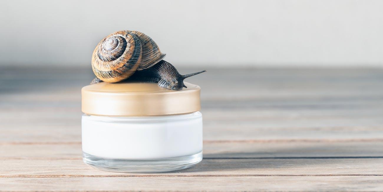 snail beauty