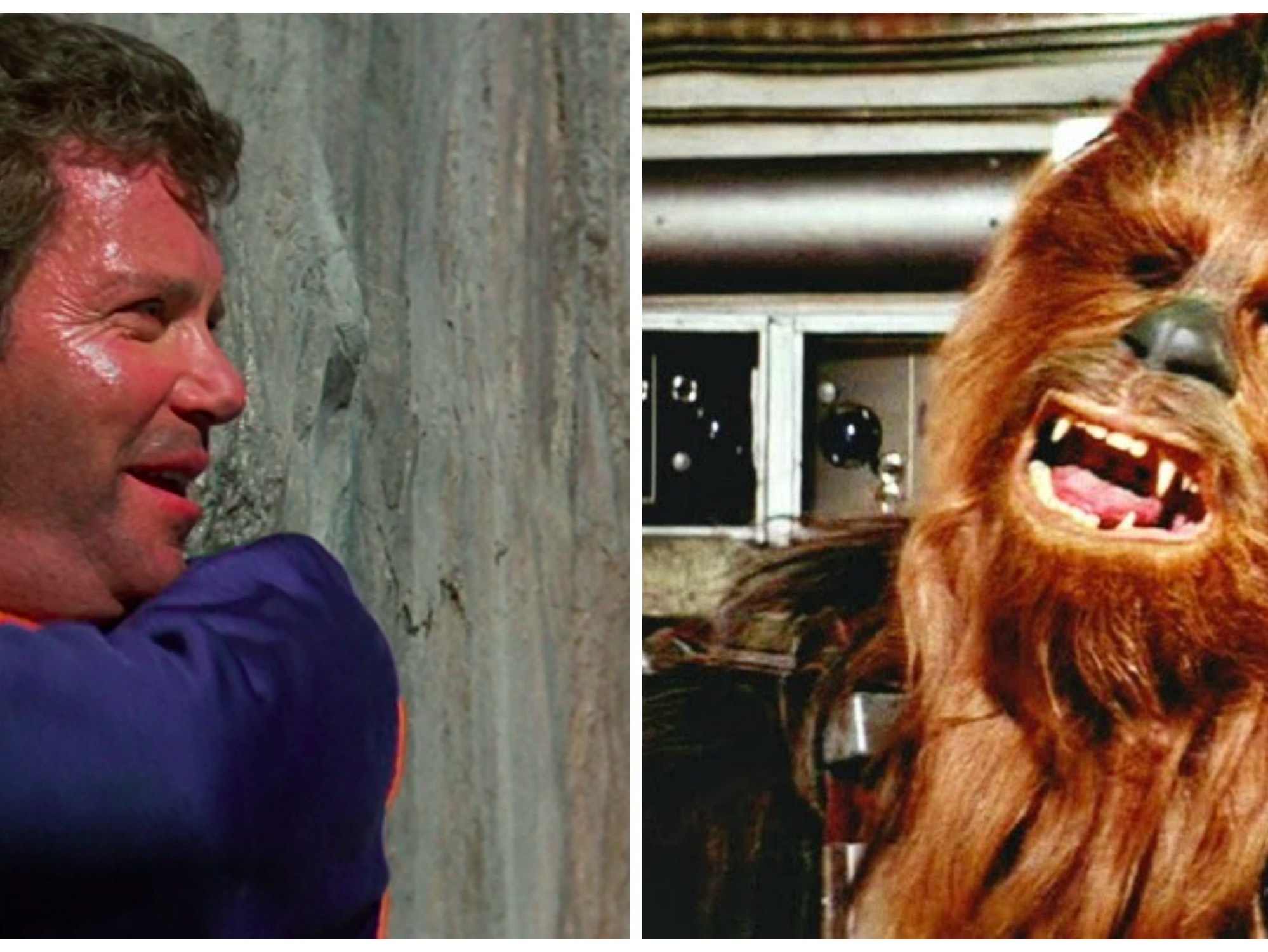 Chewbacca Slams Captain Kirk Over Lameness of 'Star Trek V'