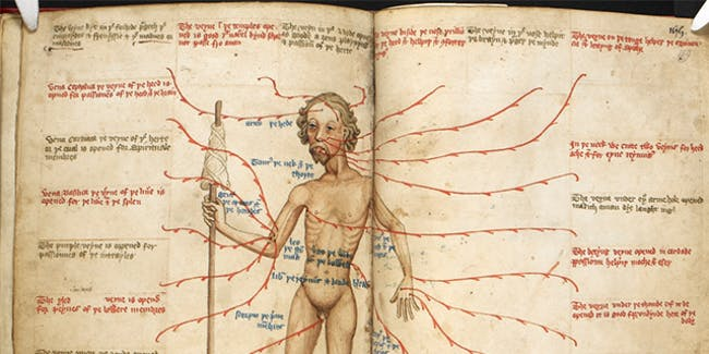 """AncientBiotics member Erin Connelly, a post-doctoral researcher in medieval studies at the University of Pennsylvania: """"We are compiling a database of medieval medical recipes."""""""