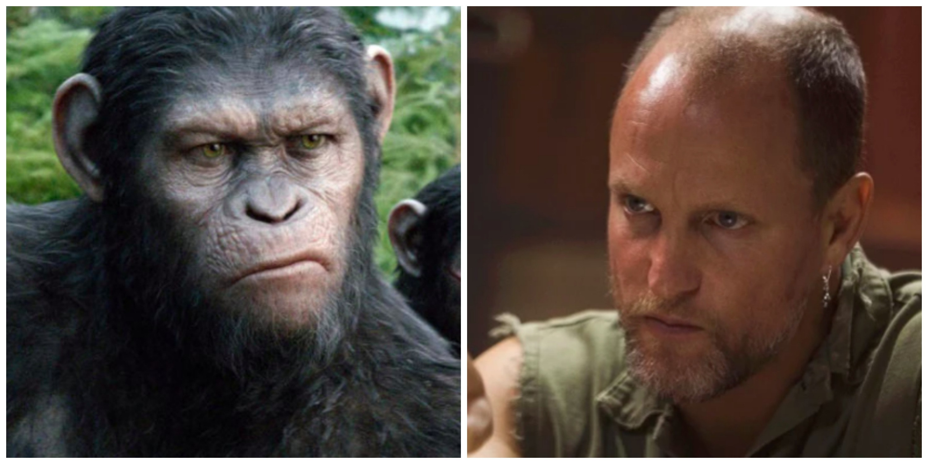 Mma Rear Naked Choke Villainous Colonel Teased In War For The Planet Of The Apes Trailer