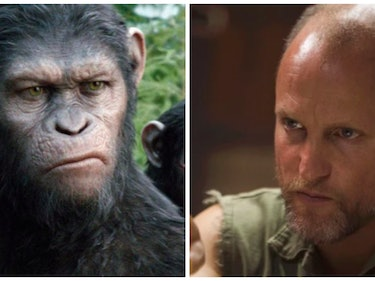 Villainous Colonel Teased in 'War for the Planet of the Apes' Trailer