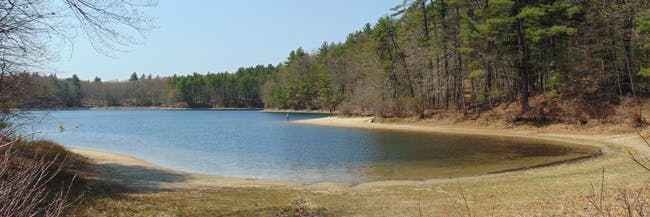 walden pond massachusetts thoreau