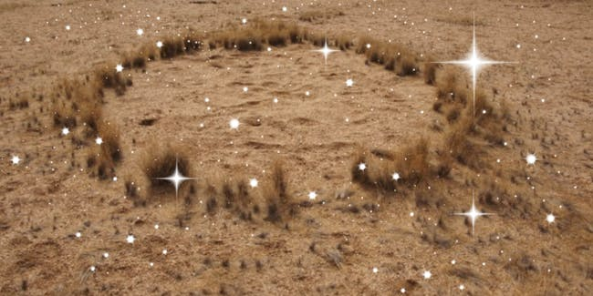 Scientists have begun to solve the mystery of the Nambi Desert fairy circles.
