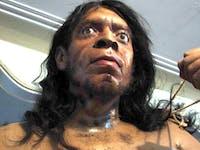 Kermanshah Pal Museum-Neanderthal