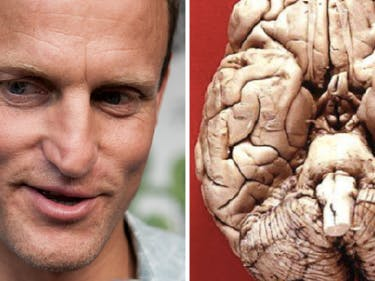 Woody Harrelson quit smoking marijuana after 30 years.