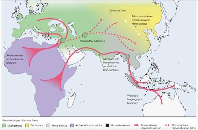 hominin map