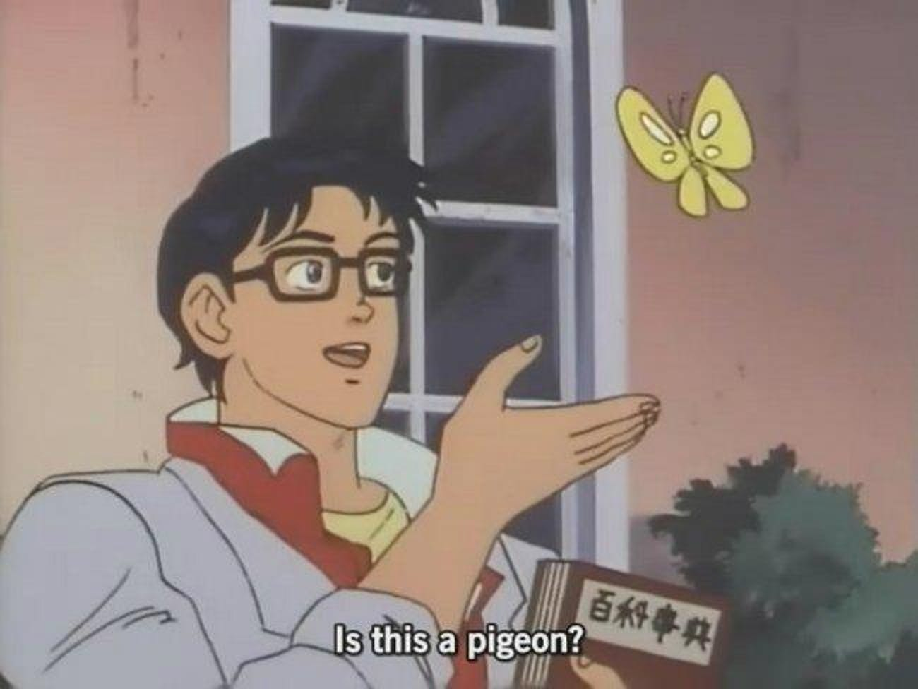 """""""Is This a Pigeon?"""" Meme"""