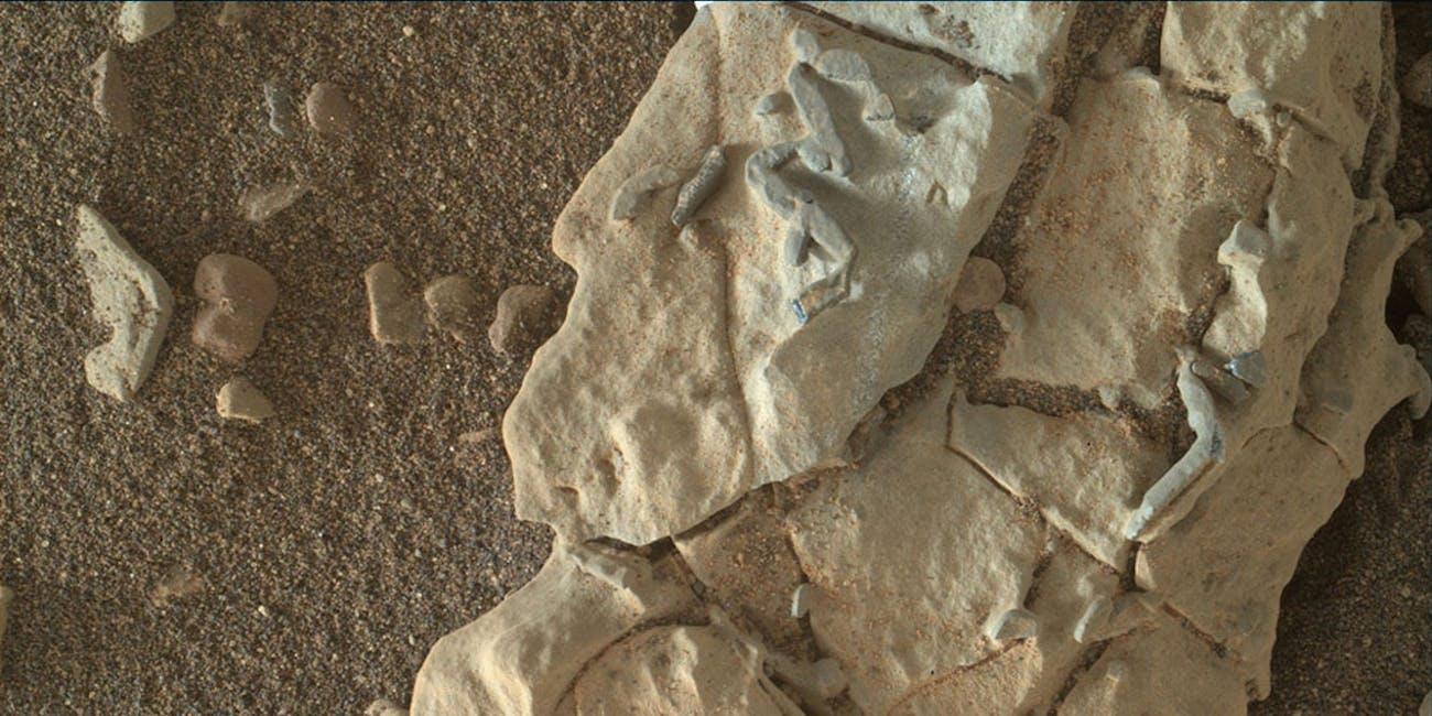 Mars Rover sesame seed