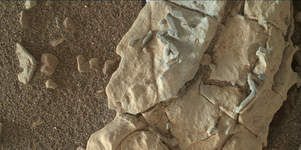 Mars Rover sesame seed