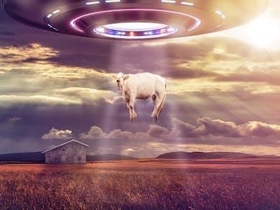 The 17 Best UFO Sightings of 2016
