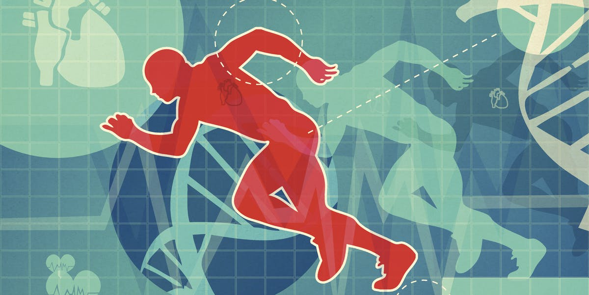 Study links 1 type of extreme exercise to reverse aging in the heart