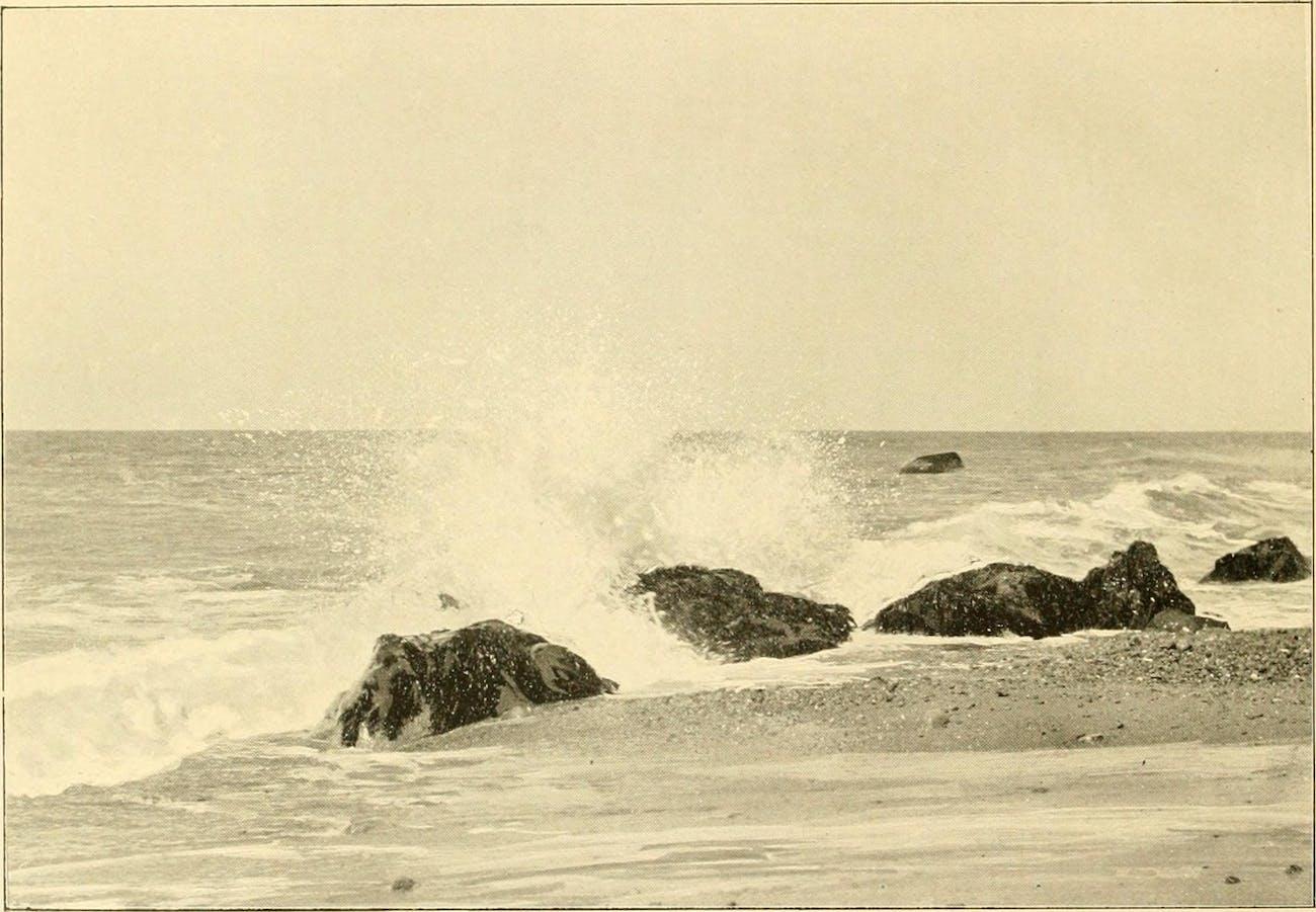 Waves crashing on Martha's Vineyard.