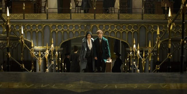 Newt and Tina in 'Fantastic Beasts and Where to Find Them'