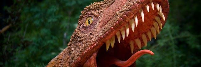 The Raptor's Roar