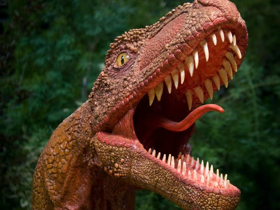 The Unimaginably Violent World of Dinosaurs