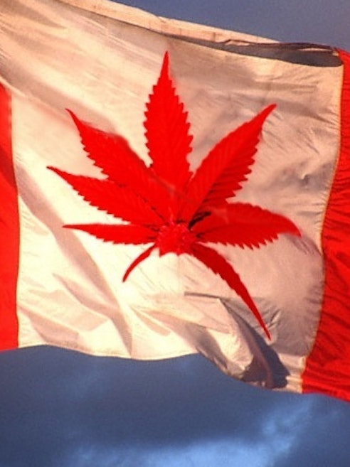 Canada's healthcare system has set a precedent for what medical marijuana dispensation should look like.