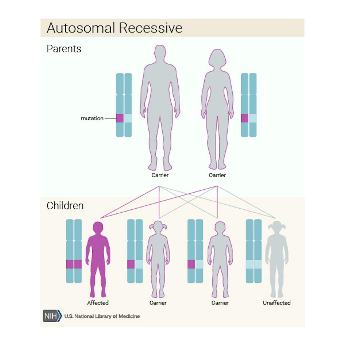 NIH, genetics