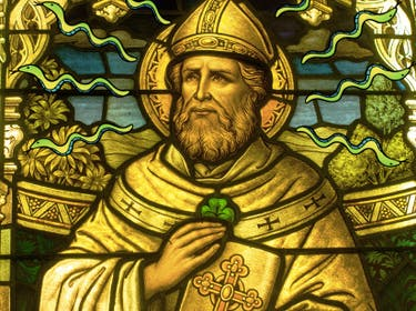 St. Patrick Should Have Used Science to Banish Snakes