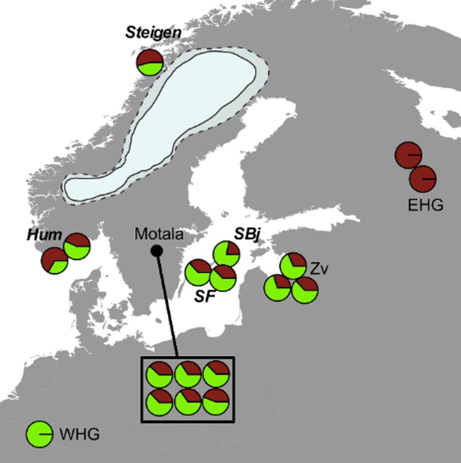 Map of the Mesolithic European samples used in this study.
