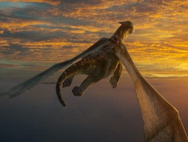 How to Train Your Digital Dragon