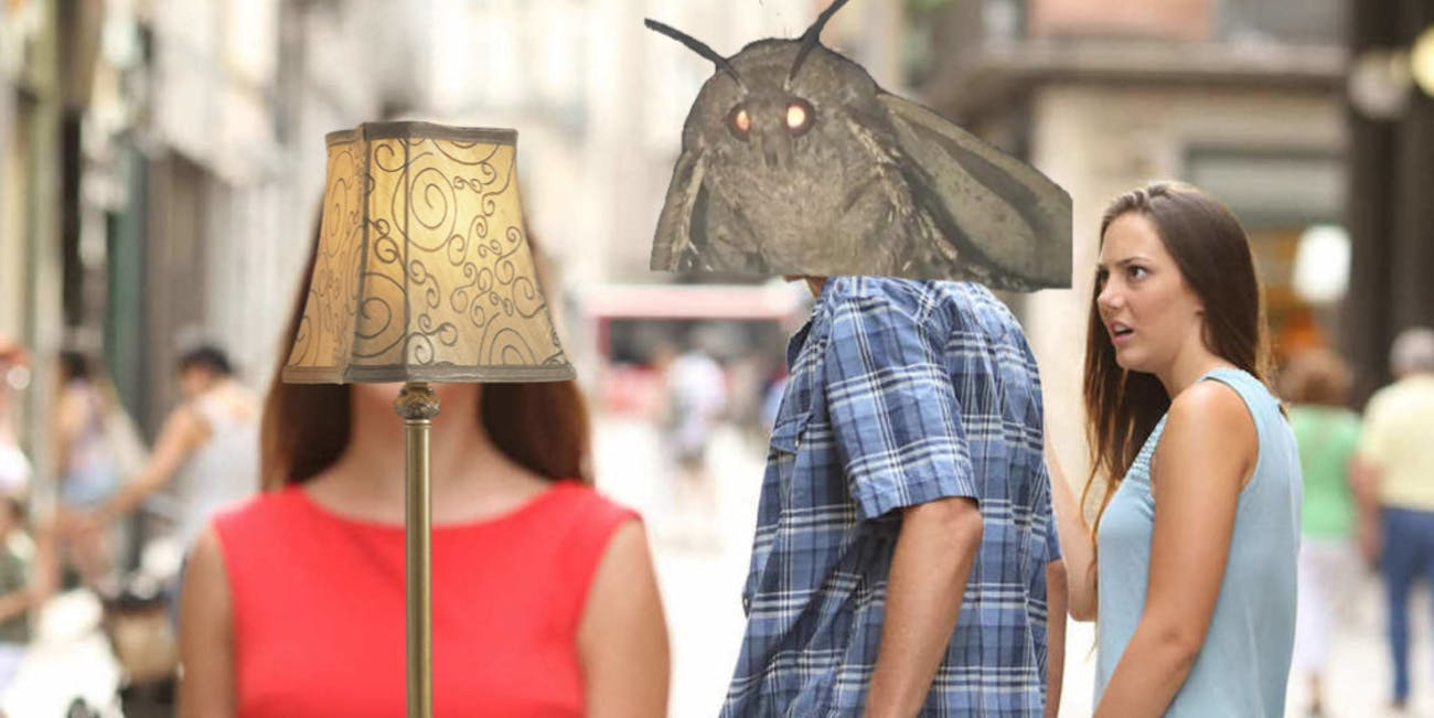distracted boyfriend moth meme