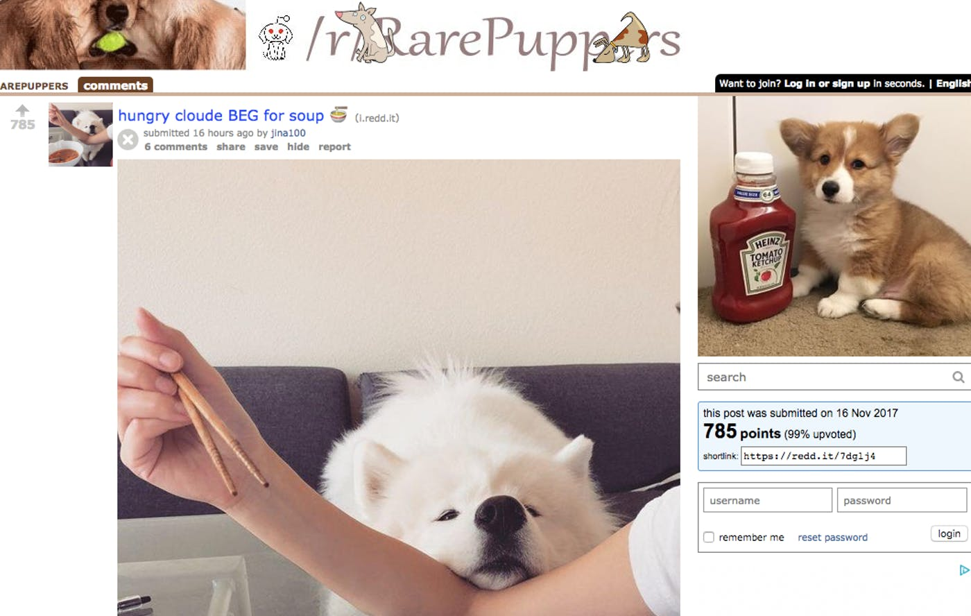The 12 Best Animal Subreddits in One Ranked List, From Cute To