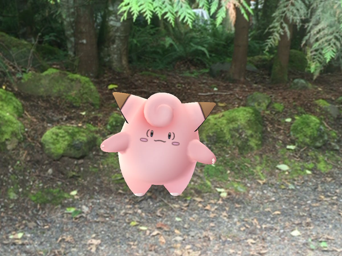 Tips For Playing 'Pokemon GO' in a Rural Setting | Inverse